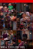 The Big Bang Theory [S06E10] HDTV.XviD-AFG